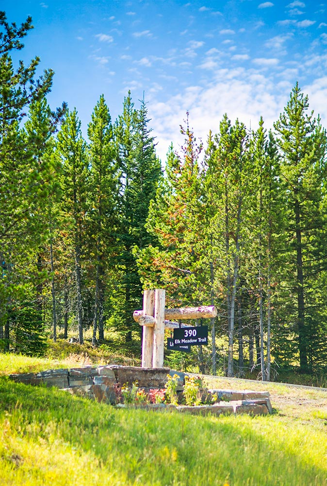 An image of mountain trees and a small stone landscaped area with a street sign