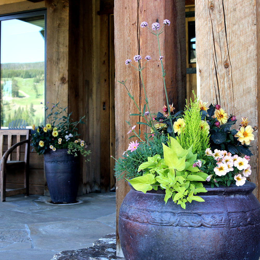 A pot filled with flowers and plants on a front porch