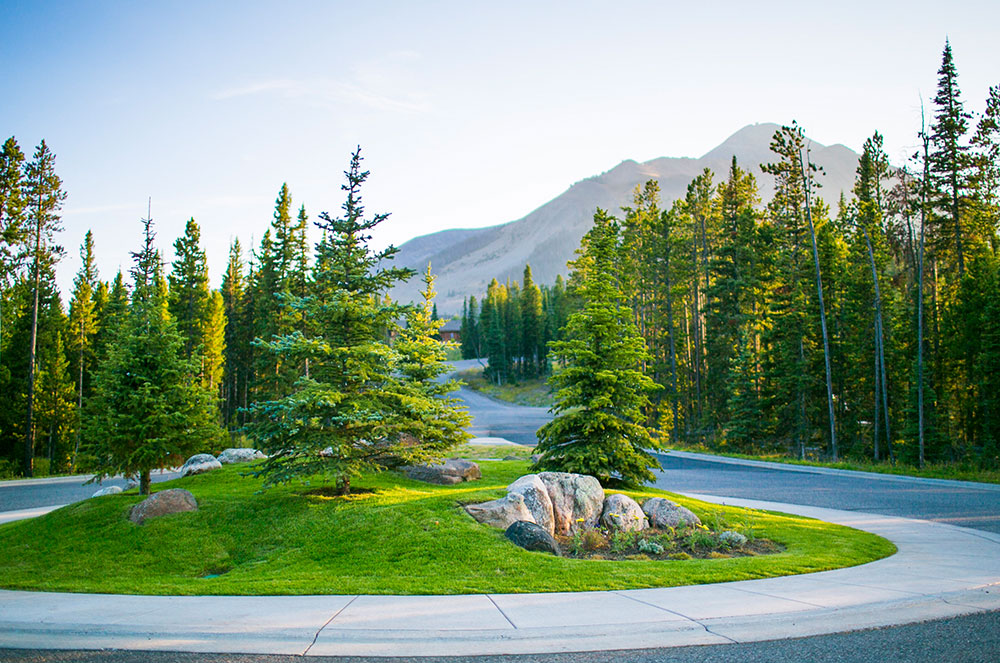 Image showing a round driveway with beautiful green grass surrounded by trees