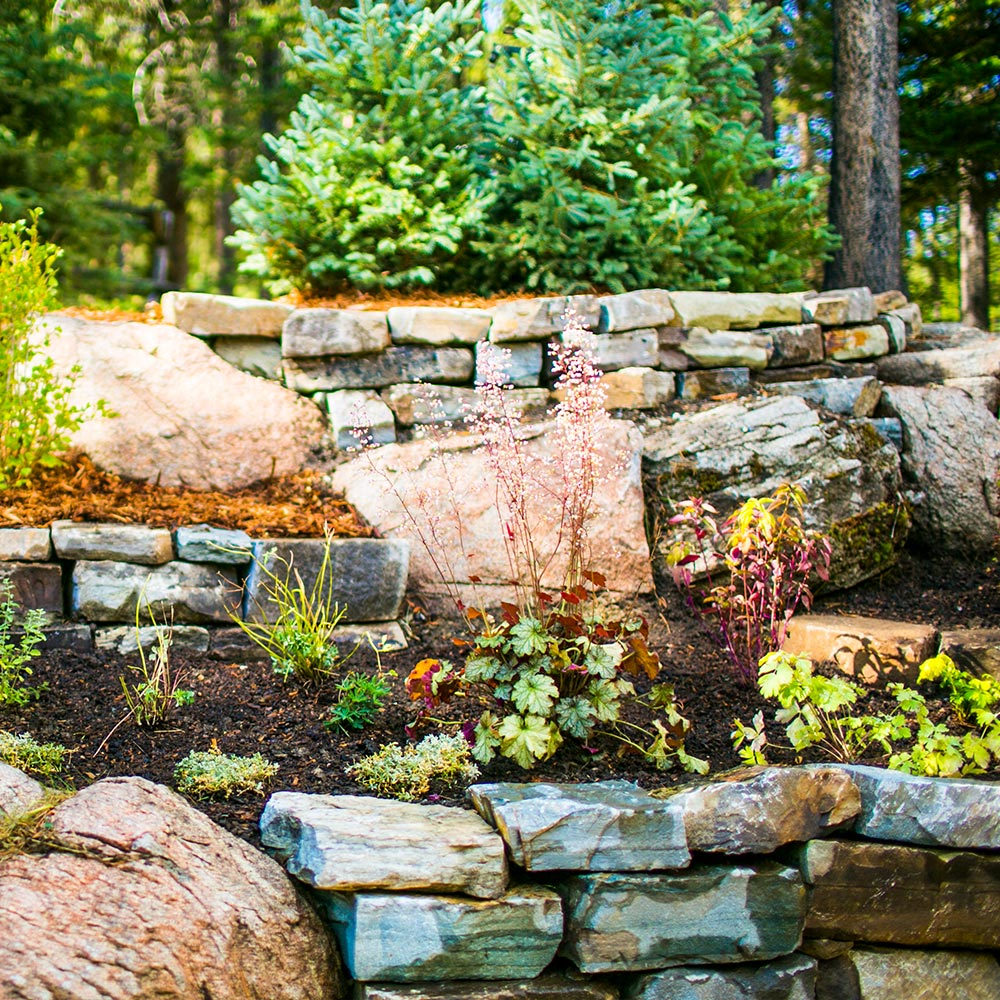 Stone wall garden with plants growing and trees in the background