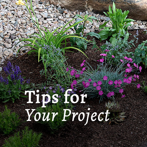 Project Tips Call to Action