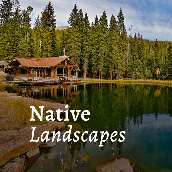 Native Landscapes Call to Action