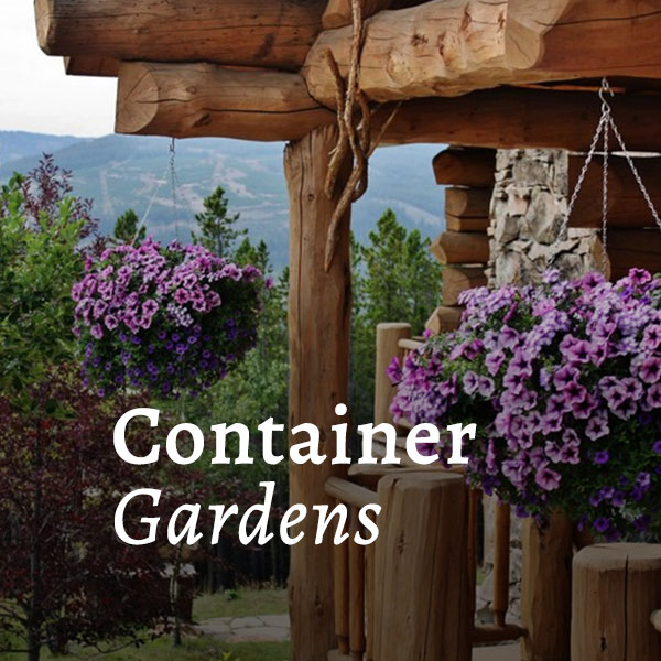 Container Gardens Call to Action